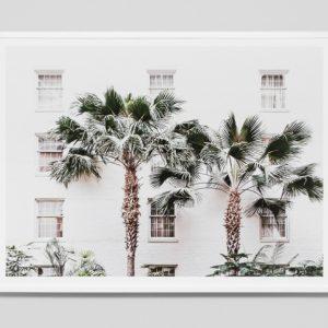 palm_resort 114 x 85cm